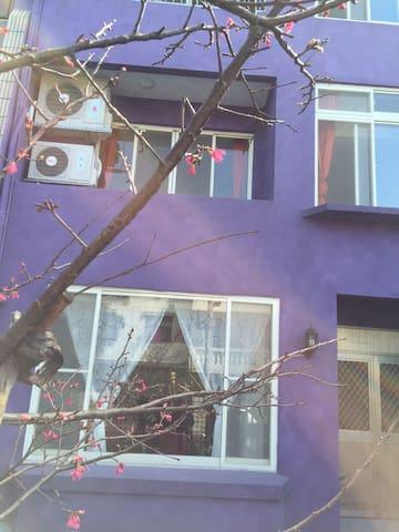 紫 . 社 探索生命的奧秘 - 三芝區