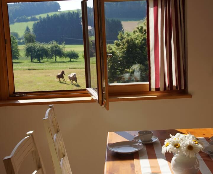 Panoramablick Höllbachtal (Rettenbach), Fewo für 4 Personen mit Kaminofen, vollausgestatteter Küche und Badewanne