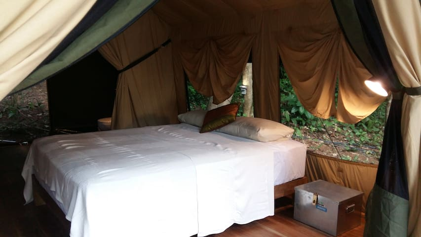 Perhentian Jungle Safari Tent 3
