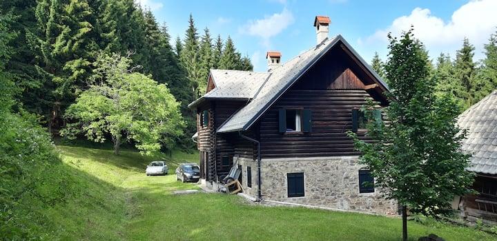 Idyllic, family-friendly mountain cabin experience