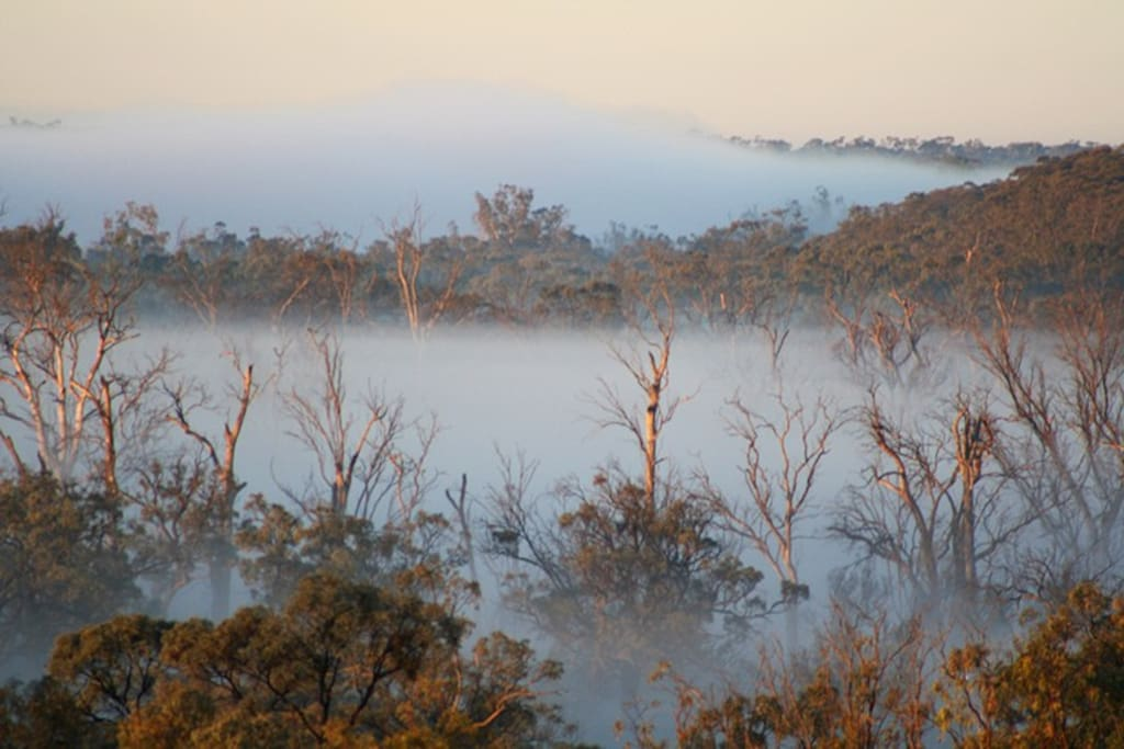 Morning mists on the river are a magic sight.