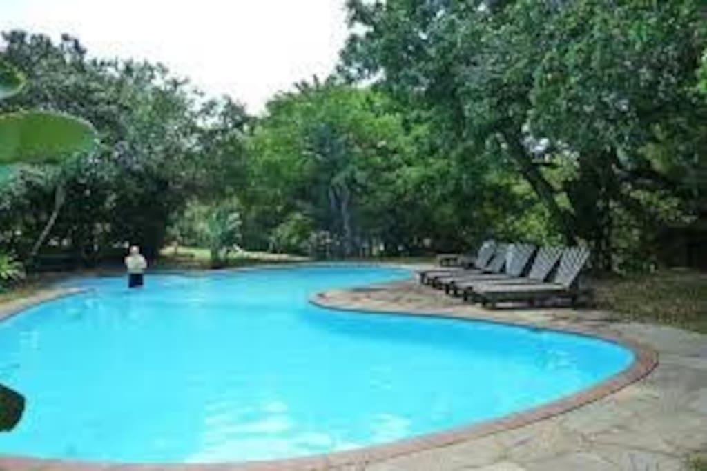 Pool in resort