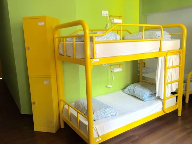 Beary's 9 Bed Ladies Dorm (Per Bed)