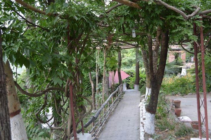 Bara Bungalow Jeolikote Nainital (Entire Bungalow)
