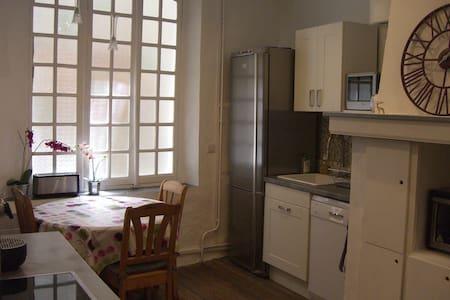 50 m2 rénové  dans le centre piéton, place calme - Embrun - Leilighet
