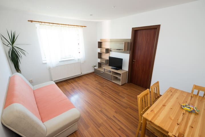 Bright & Fresh apartment for the traveler in you!