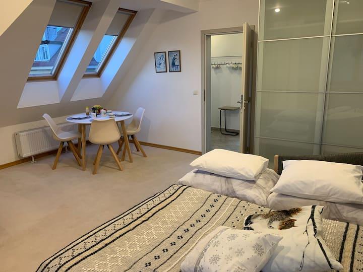 NEW Attic apartment in private villa with garden