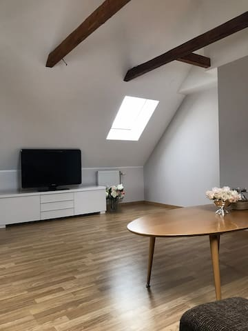 Newly renovated Near city center Easy accessible