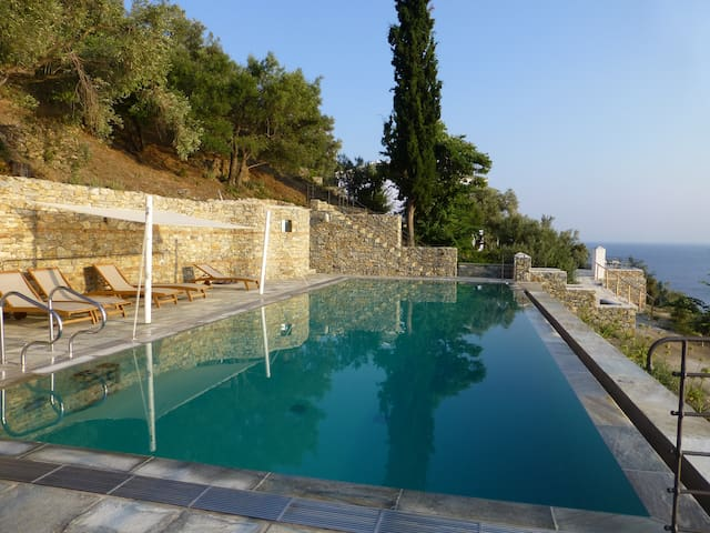 The blue house in the olive trees, by the sea