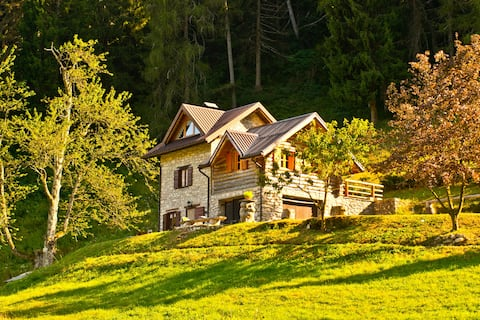 Alpine  chalet  immersed in nature