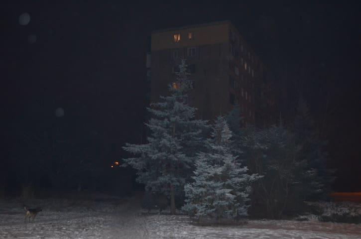 Квартира, Kryvyi Rih