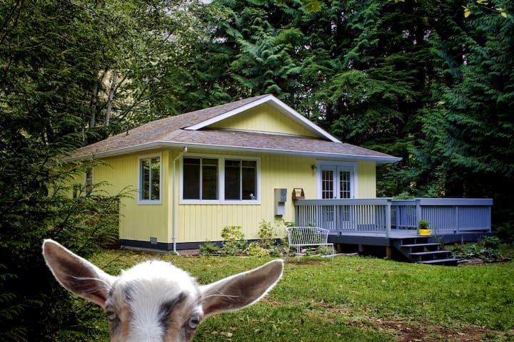 Diamond Cottage