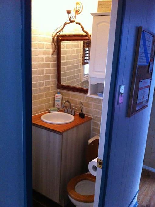 Petite salle de bain avec une douche