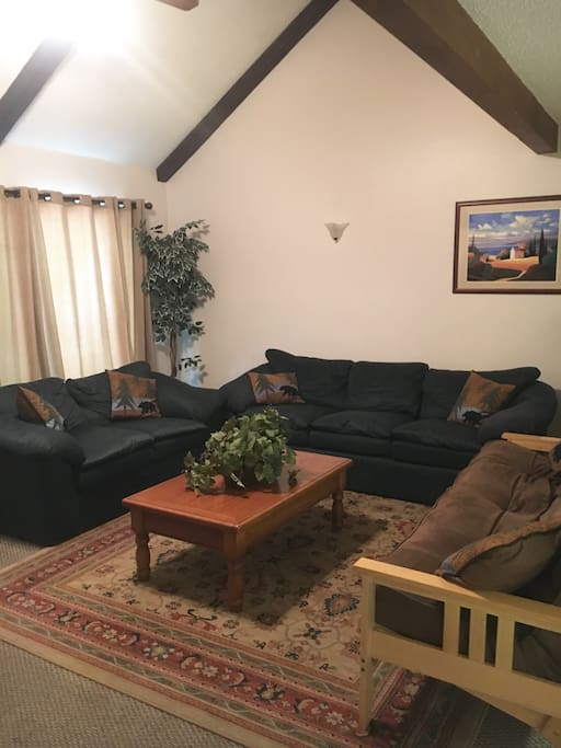Large living room with vaulted ceiling, full size futon and fire place