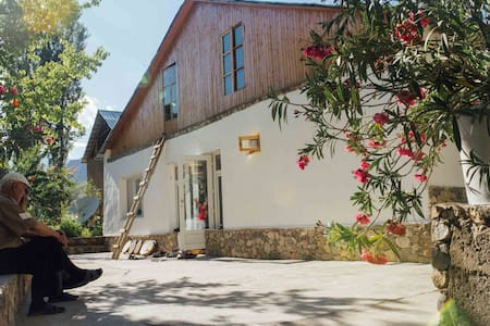 Lalmo Homestay - Khorog - Bed & Breakfast