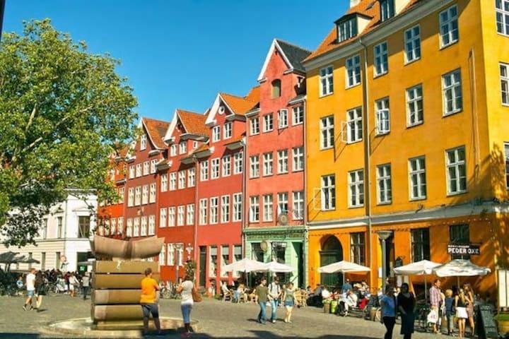 Room in central Copenhagen 1