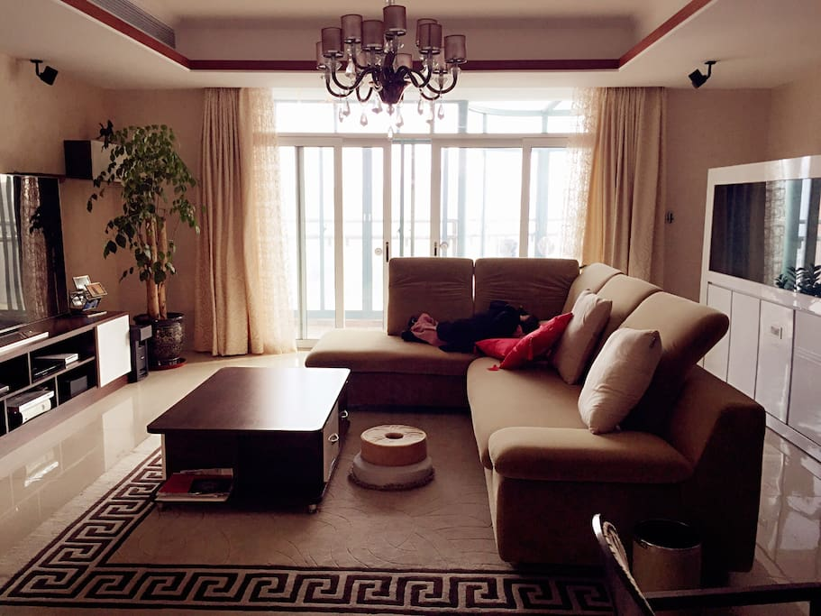 Big and luxury living room with balcony. One extra large 65' 3D TV set and DVD.