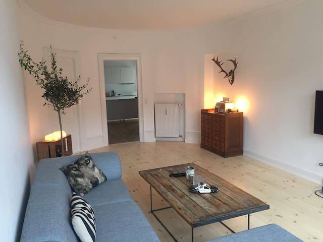 Big flat in the heart of Copenhagen - København - Apartment