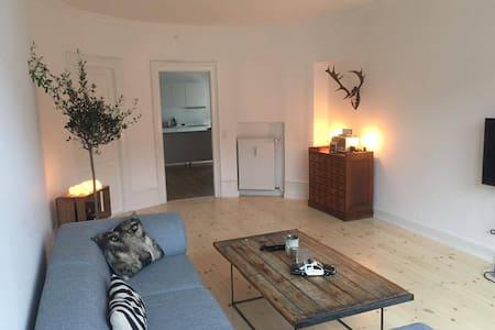 Big flat in the heart of Copenhagen - Kopenhagen - Appartement