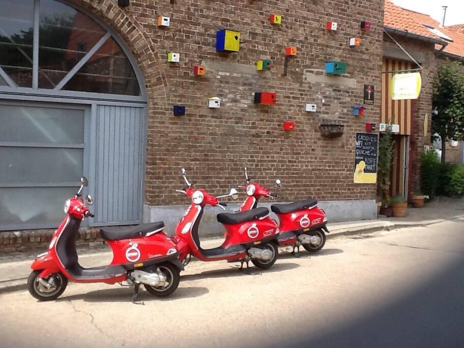 Prachtige Vespa's om door het wonderschone Haspengouwse landschap te rijden