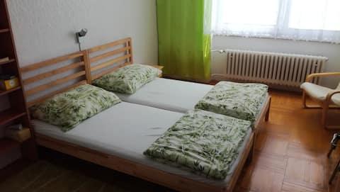 Zelený pokoj v Mohelnici