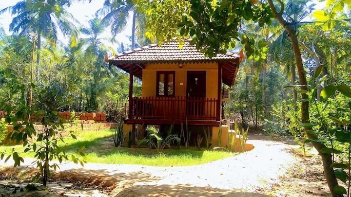 OmBodhi-Cottage (C) Garden View at Kumta (Gokarna)