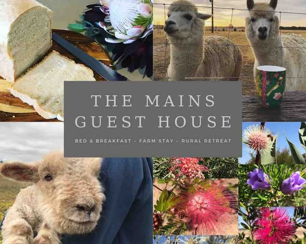 The Mains Guest House ~Rural Retreat~B&B~Farm Stay