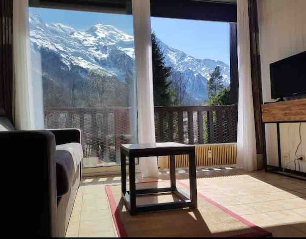 Studio calme, belle vue Mont Blanc, wifi, parking