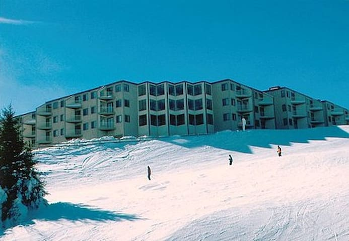 Save $$, Mtn Lodge 231, 1 BR, Ski in/out