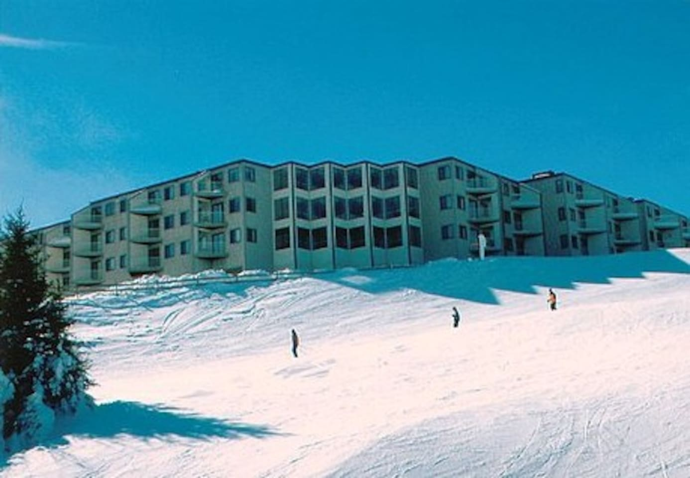 Mountain Lodge is right on the slopes