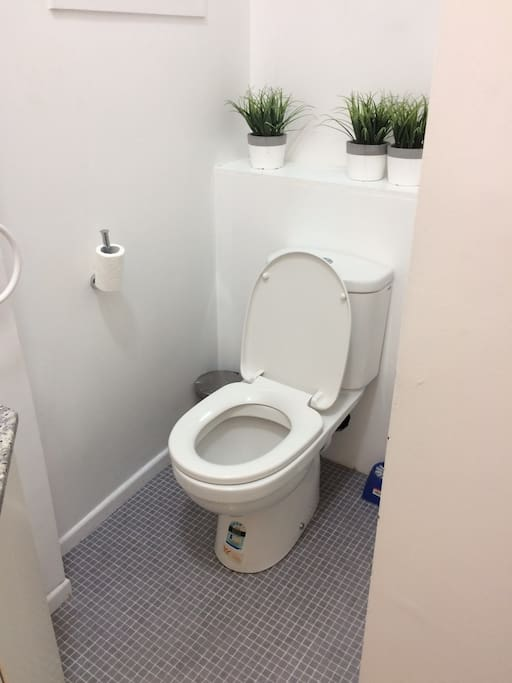 Shared Toilet on Level 1