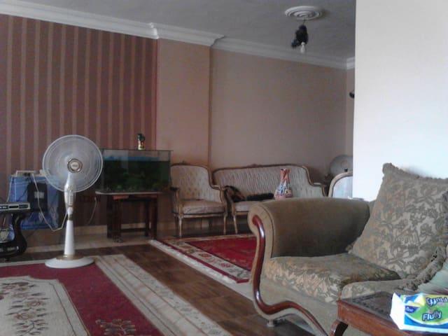 Mokattam Apartment