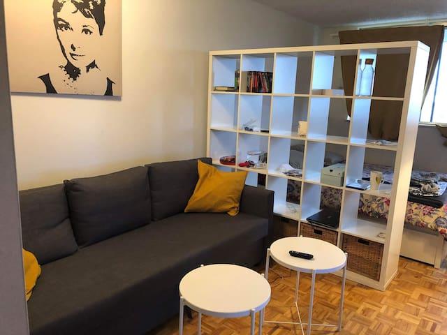 Nice studio near Parc Lafontaine+ parking