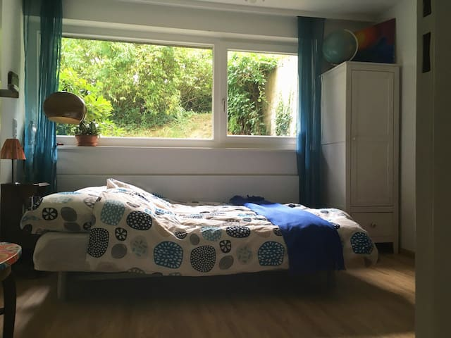 Cozy, quiet double room, FR- Litt. - Freiburg im Breisgau - House