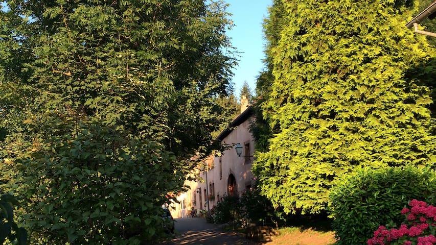 Gîte au cœur de La Petite Pierre à l'orée des bois - La Petite-Pierre - Condomínio