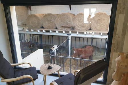 Lodge insolite et inédit 4 épis avec des chevaux