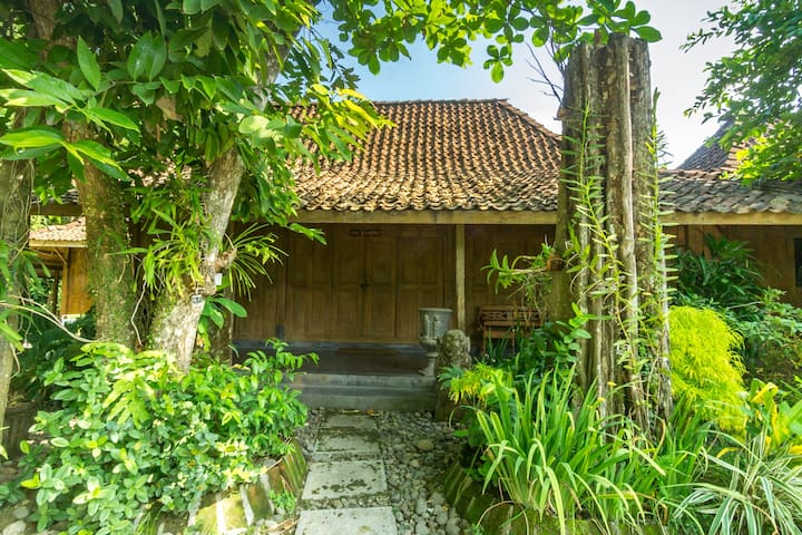 Serene Teak Wood Bungalow by the Rice Field