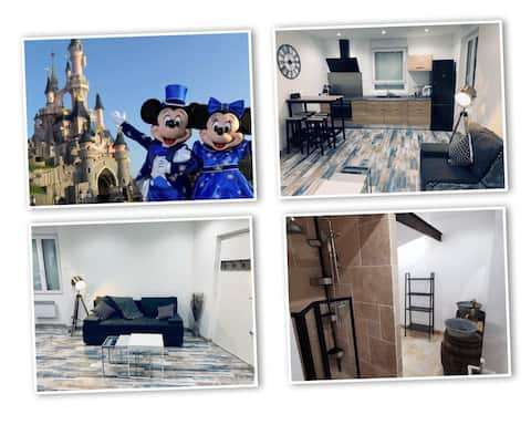 Magnifique F2 à 11 min de Disneyland paris