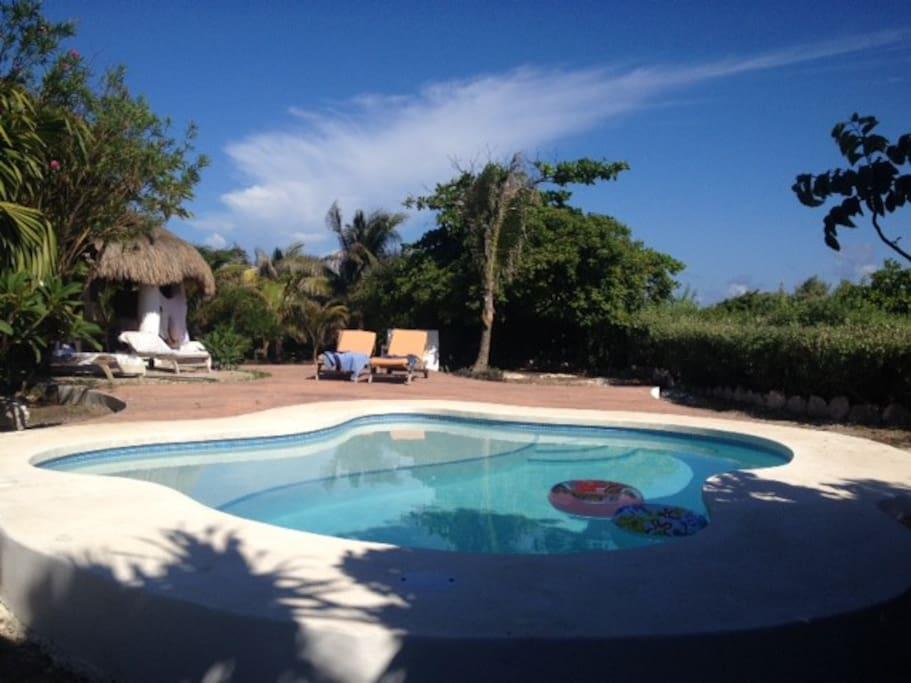 private saltwater  pool