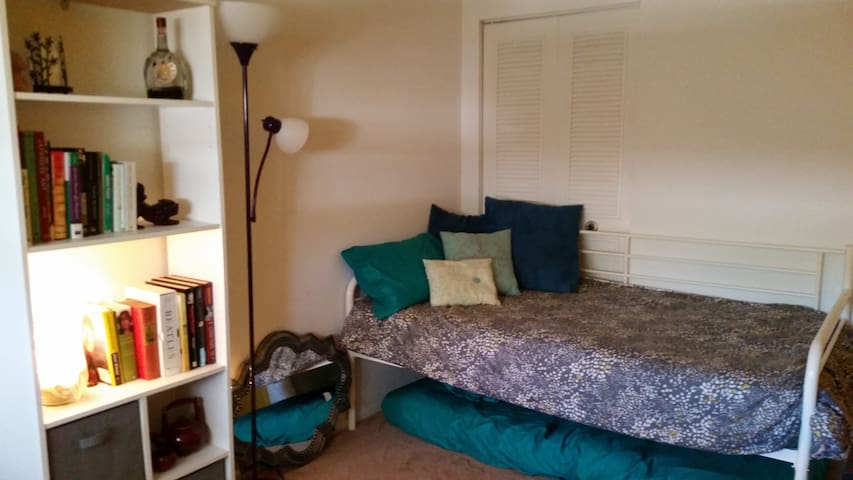 Mexicali room, 2 twin beds, futon  & shared bath - Charleston - Daire