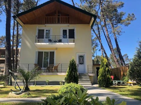 Дом, Vila Grigoleti.