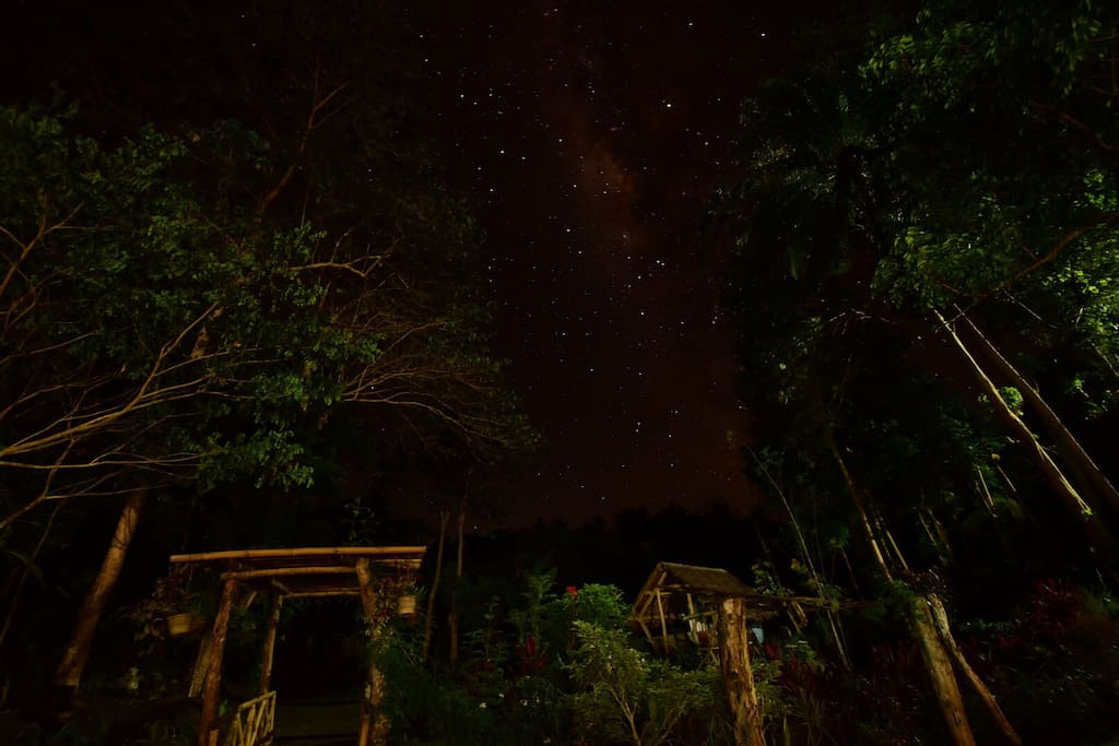 Your night sky.