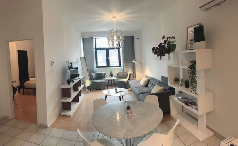 Beautiful brand new 1 bdrm apt Park Ave. Mile-End!