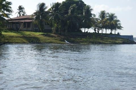 Um quarto em uma ilha paradisíaca na natureza