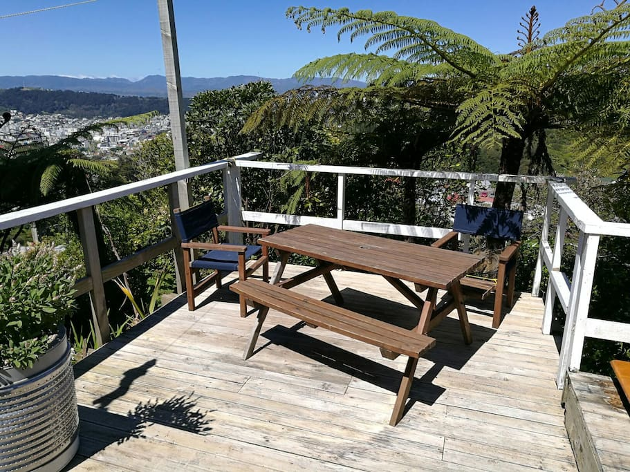 View of Wellington from the deck