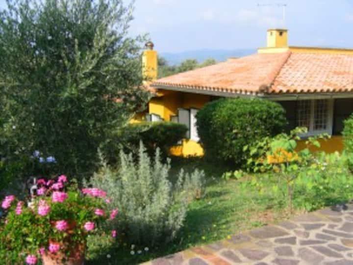 Villa Gialla di Cosa