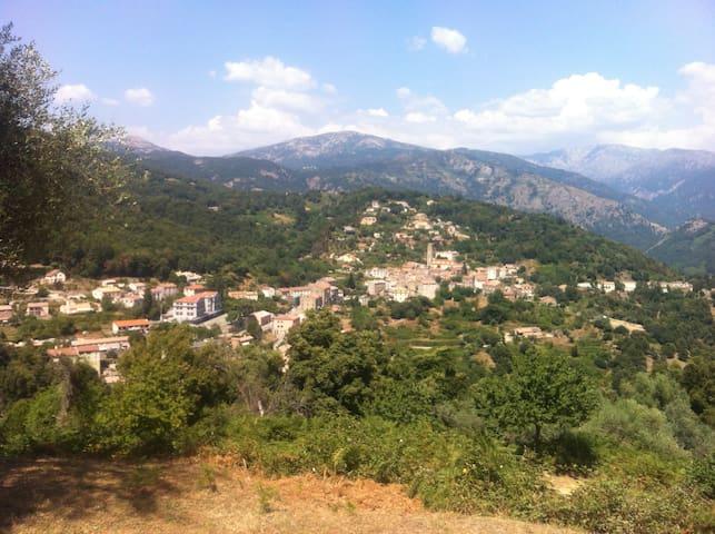 Nesa hameau de Vico proche GR 20 - Vico - Dům