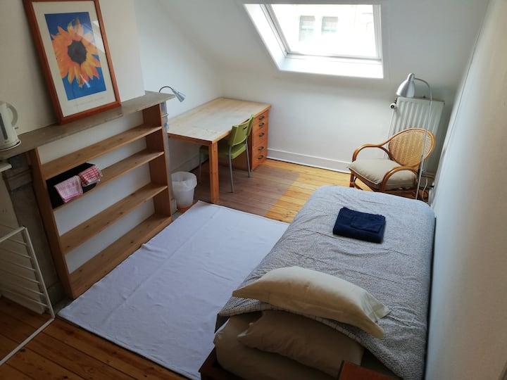 Gorgeous Cozy Room (Saint-Gilles / Ixelles)