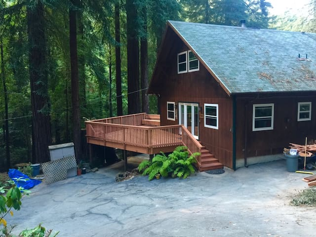 Cozy house in the redwoods