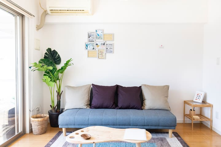 living room sofabed with decor